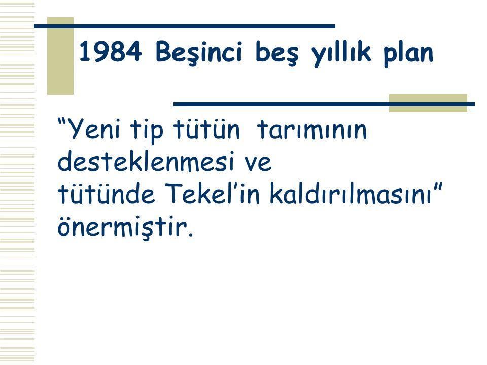 1984 Beşinci beş yıllık plan