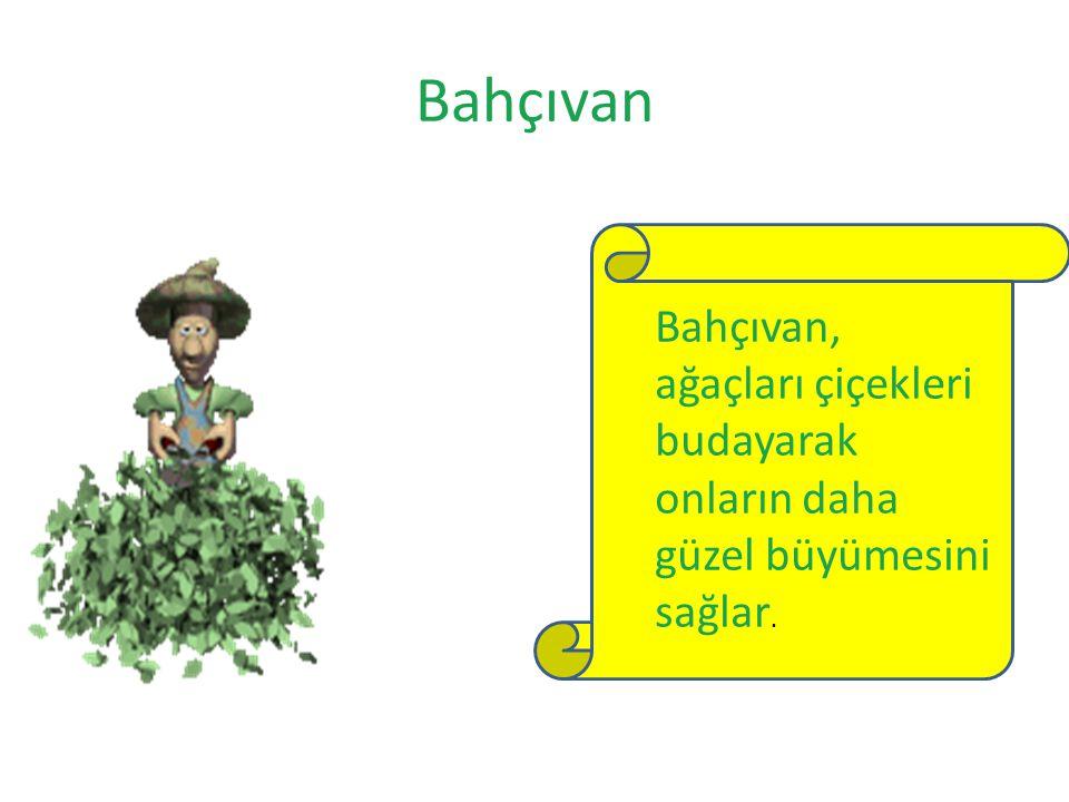 Bahçıvan Bahçıvan, ağaçları çiçekleri budayarak onların daha güzel büyümesini sağlar.