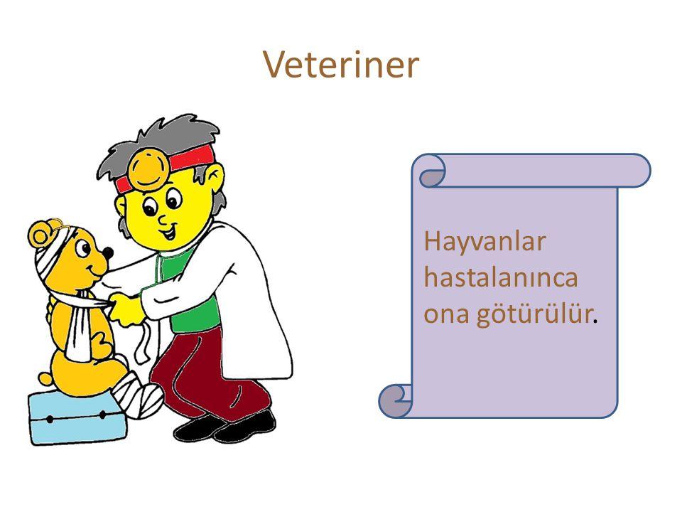 Veteriner Hayvanlar hastalanınca ona götürülür.