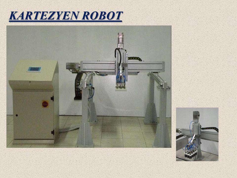 KARTEZYEN ROBOT