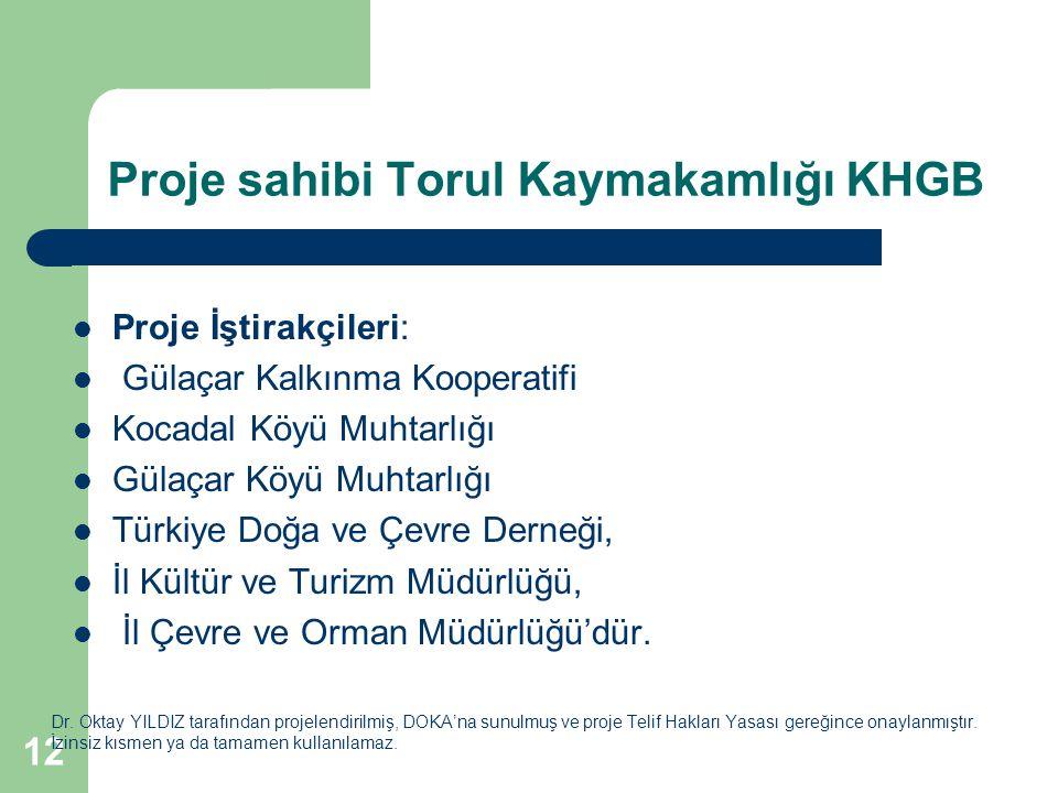 Proje sahibi Torul Kaymakamlığı KHGB