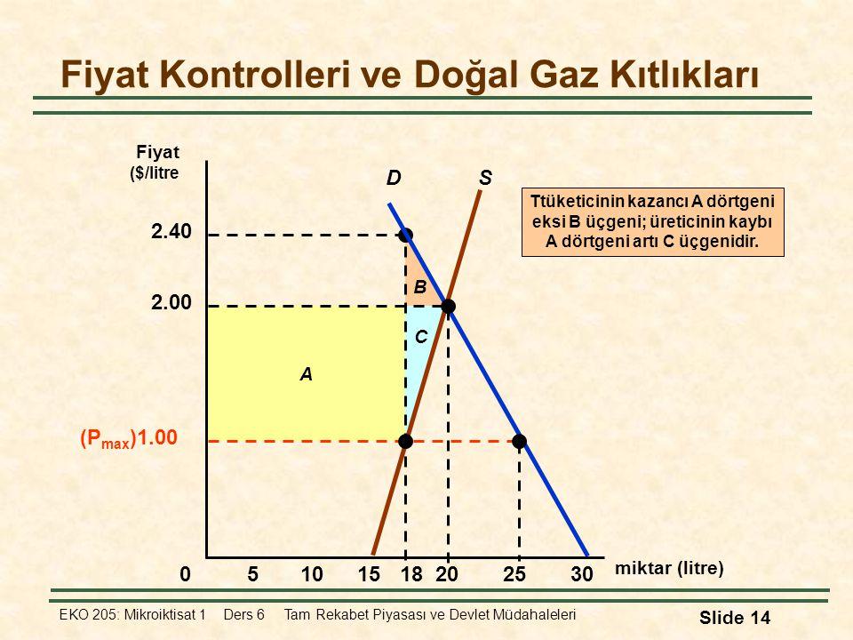 Fiyat Kontrolleri ve Doğal Gaz Kıtlıkları