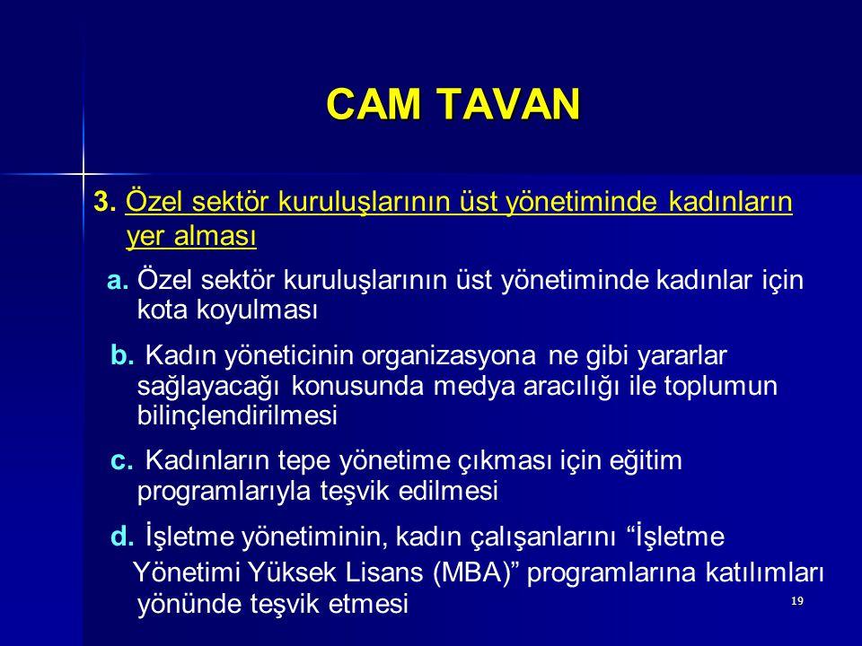 CAM TAVAN 3. Özel sektör kuruluşlarının üst yönetiminde kadınların. yer alması.
