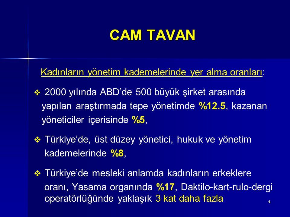 CAM TAVAN Kadınların yönetim kademelerinde yer alma oranları:
