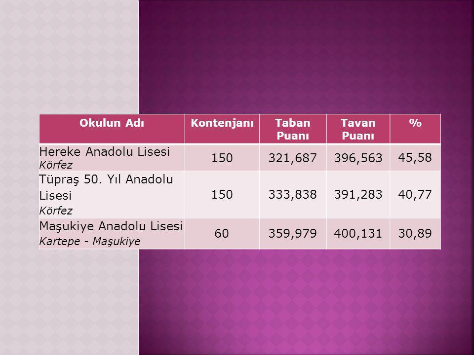 Tüpraş 50. Yıl Anadolu Lisesi 333,838 391,283 40,77