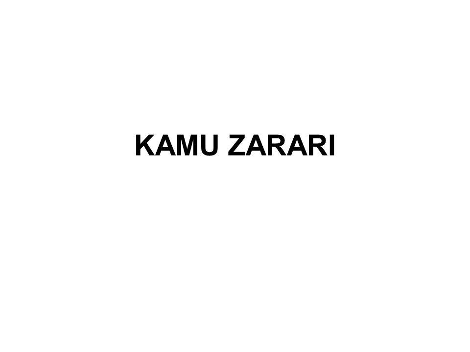 KAMU ZARARI
