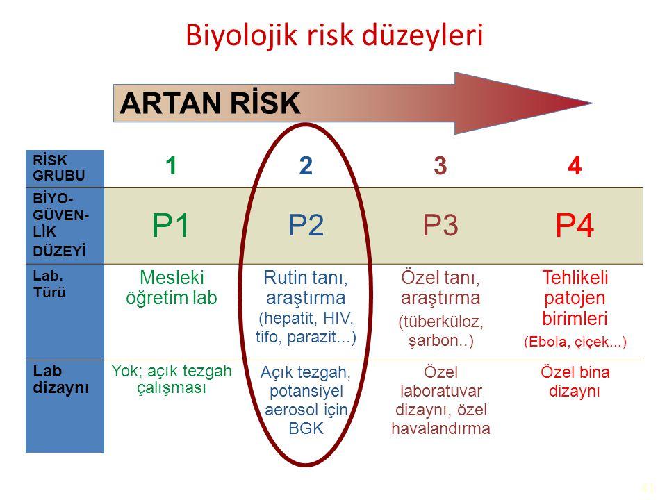 Biyolojik risk düzeyleri