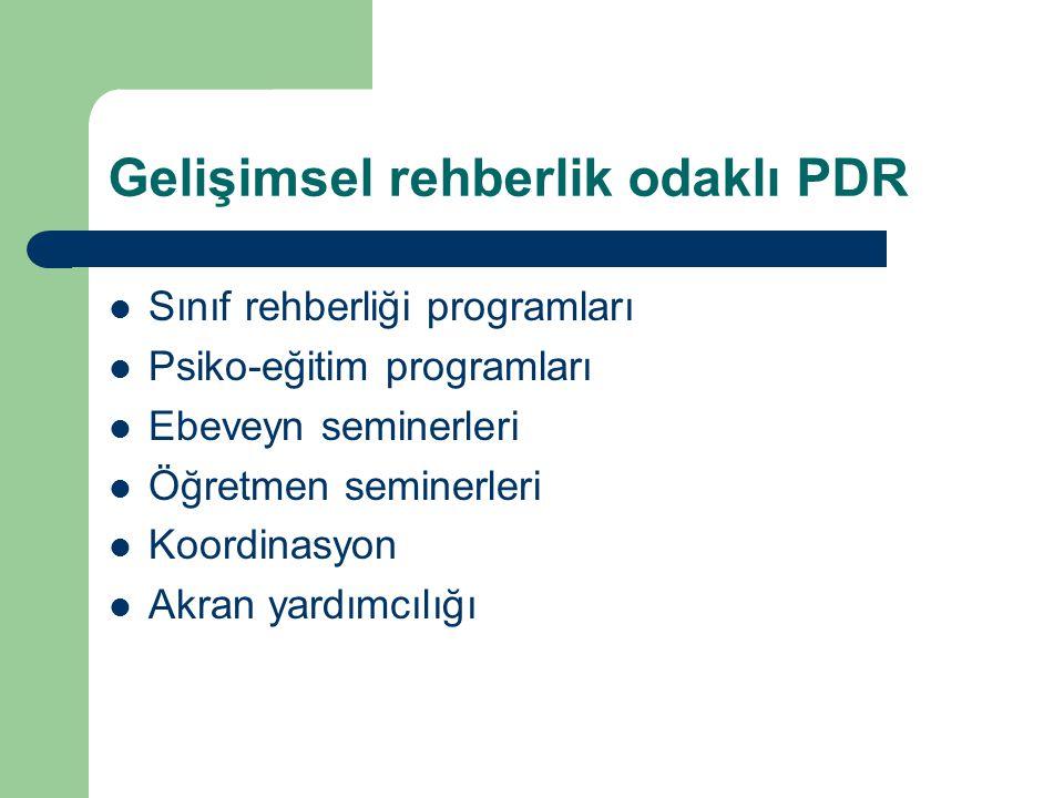 Gelişimsel rehberlik odaklı PDR