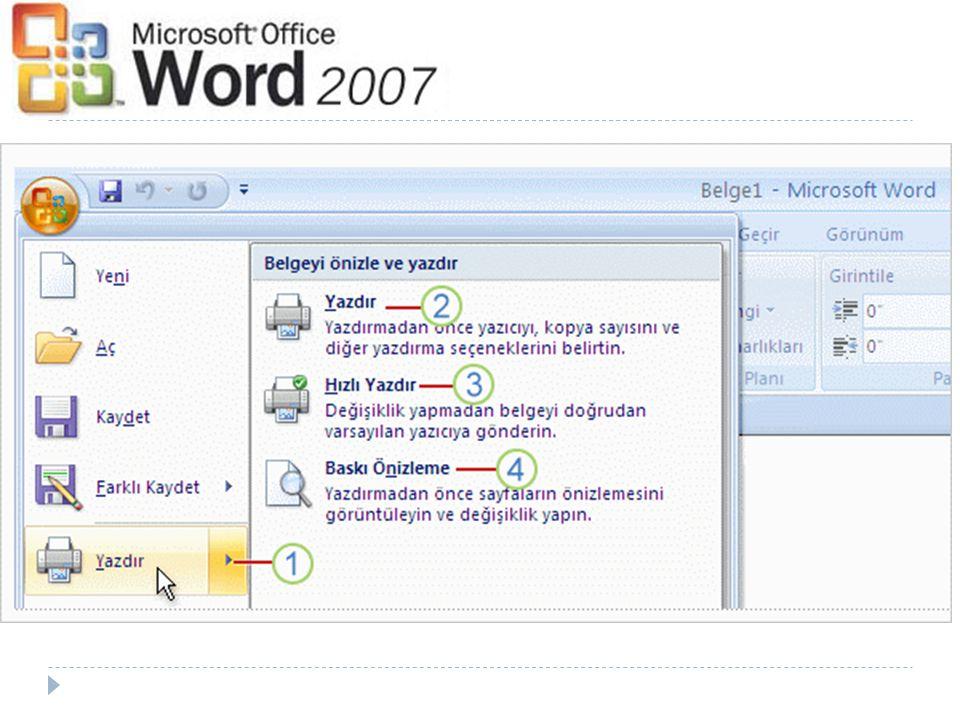 Yazdırma işlemine gerçekten hazır olduğunuzda Microsoft Office Düğmesi ne dönün. Ancak artık aşağıdaki seçeneklere sahip olduğunuzu unutmayın: