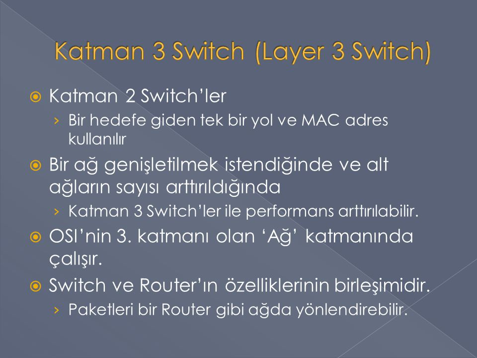 Katman 3 Switch (Layer 3 Switch)