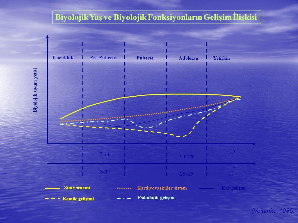 ♀ ♂ Biyolojik Yaş ve Biyolojik Fonksiyonların Gelişim İlişkisi 7-11