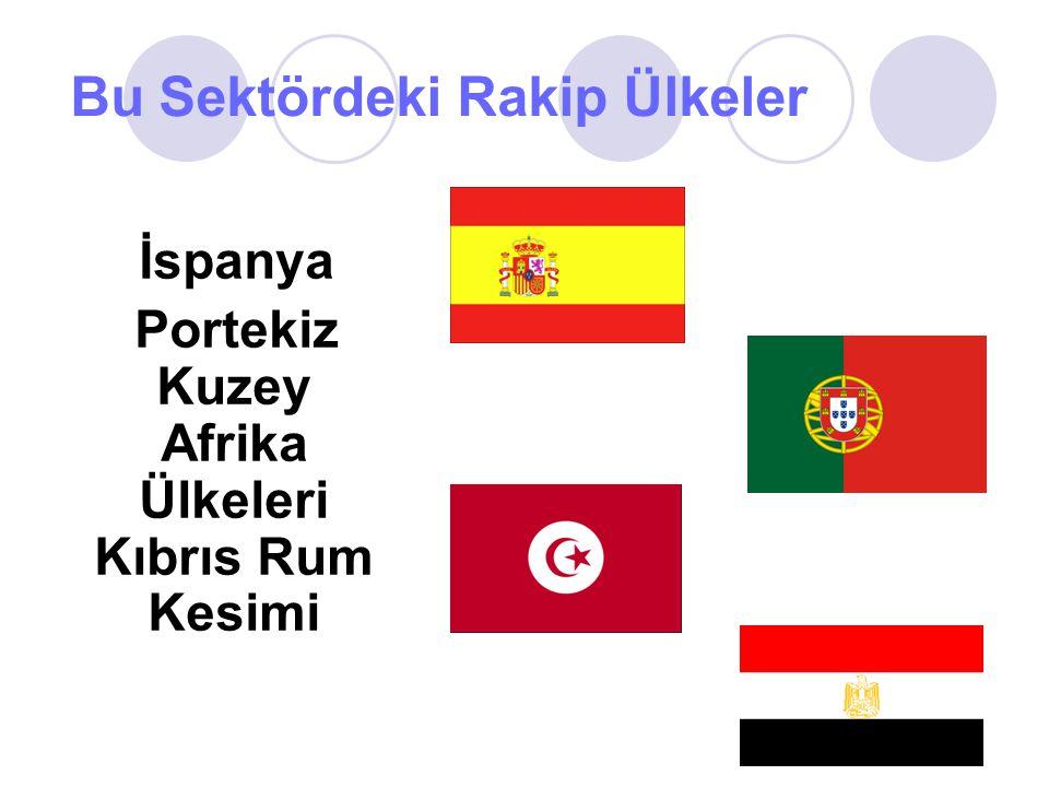 Bu Sektördeki Rakip Ülkeler