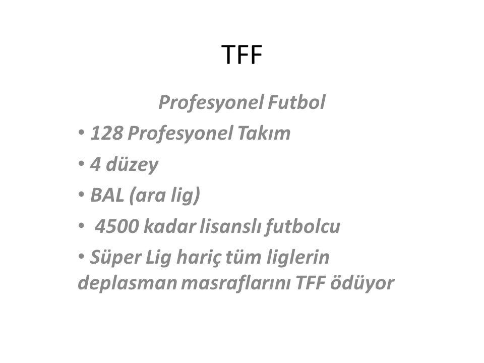 TFF Profesyonel Futbol 128 Profesyonel Takım 4 düzey BAL (ara lig)
