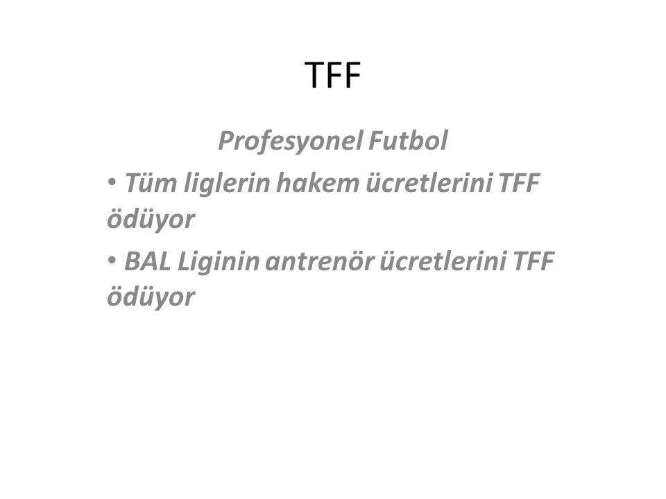 TFF Profesyonel Futbol Tüm liglerin hakem ücretlerini TFF ödüyor