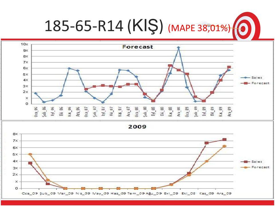 185-65-R14 (KIŞ) (MAPE 38,01%) 1 Reference 22
