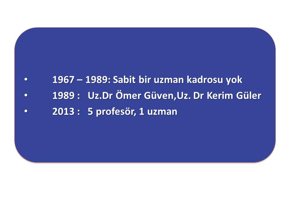 1967 – 1989: Sabit bir uzman kadrosu yok