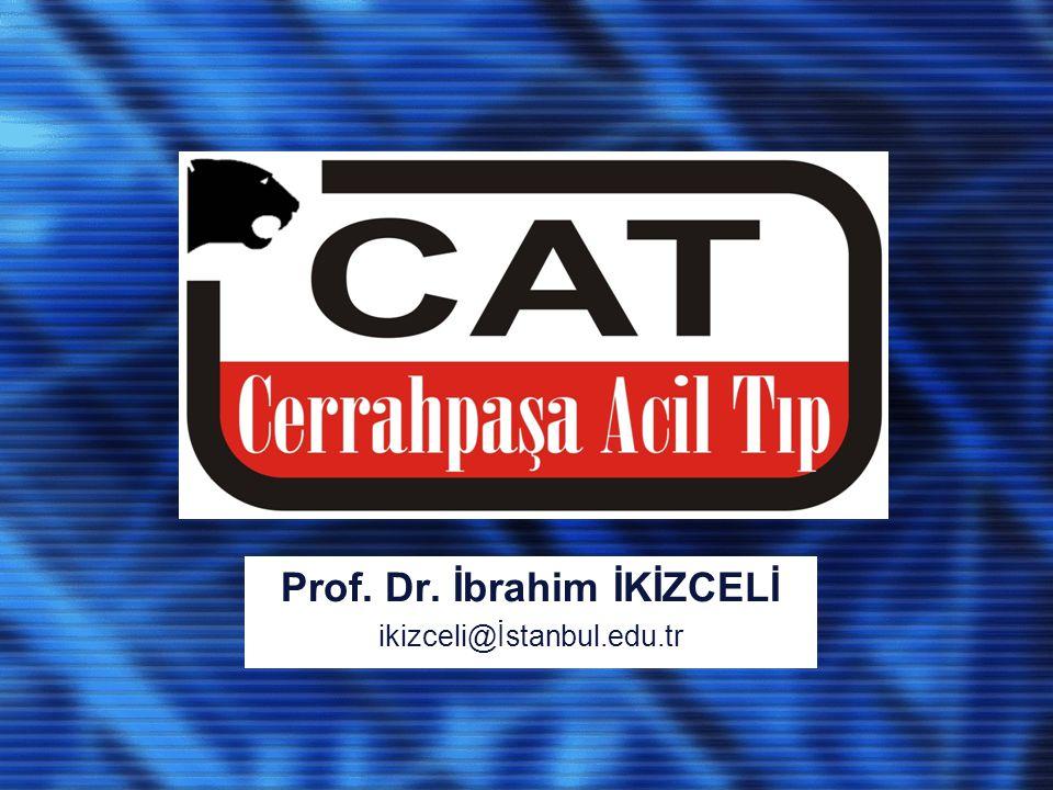 Prof. Dr. İbrahim İKİZCELİ ikizceli@İstanbul.edu.tr