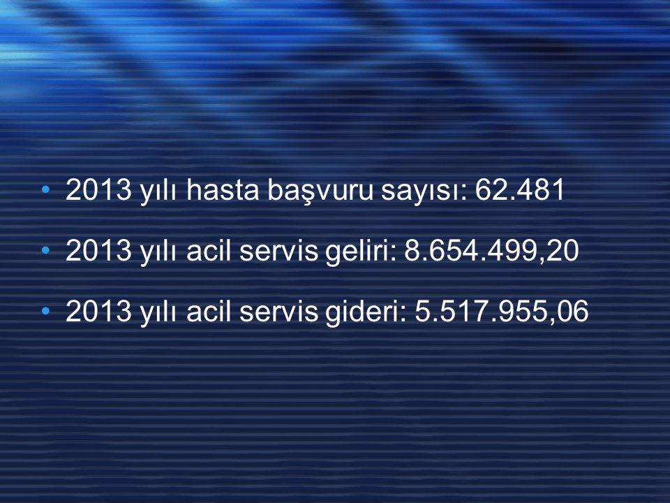 2013 yılı hasta başvuru sayısı: 62.481