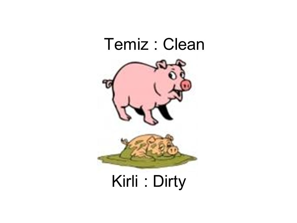Temiz : Clean Kirli : Dirty
