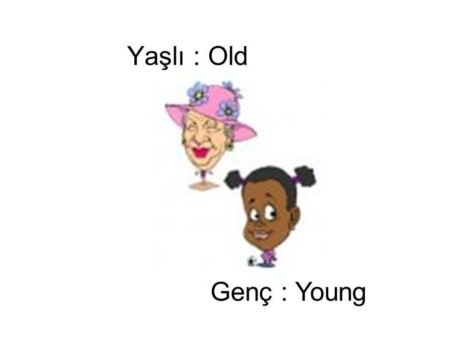 Yaşlı : Old Genç : Young