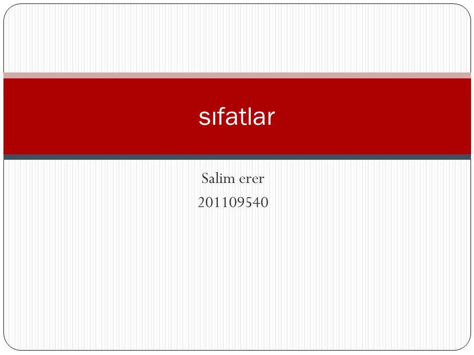 sıfatlar Salim erer 201109540