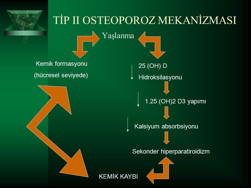 TİP II OSTEOPOROZ MEKANİZMASI