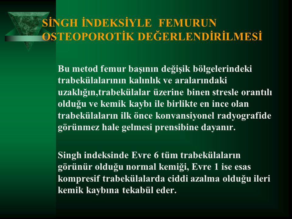 SİNGH İNDEKSİYLE FEMURUN OSTEOPOROTİK DEĞERLENDİRİLMESİ