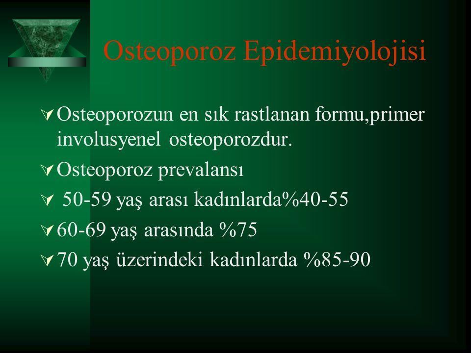 Osteoporoz Epidemiyolojisi
