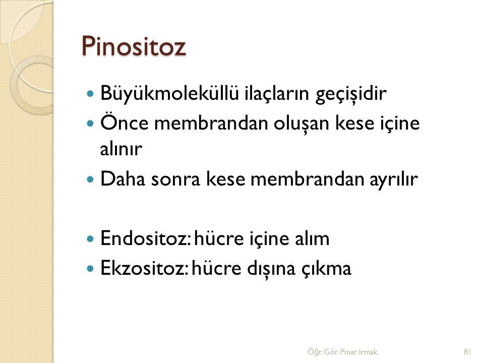 Pinositoz Büyükmoleküllü ilaçların geçişidir