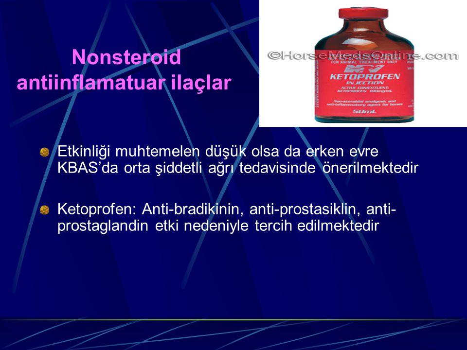 Nonsteroid antiinflamatuar ilaçlar