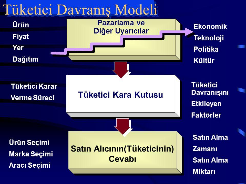 Tüketici Davranış Modeli