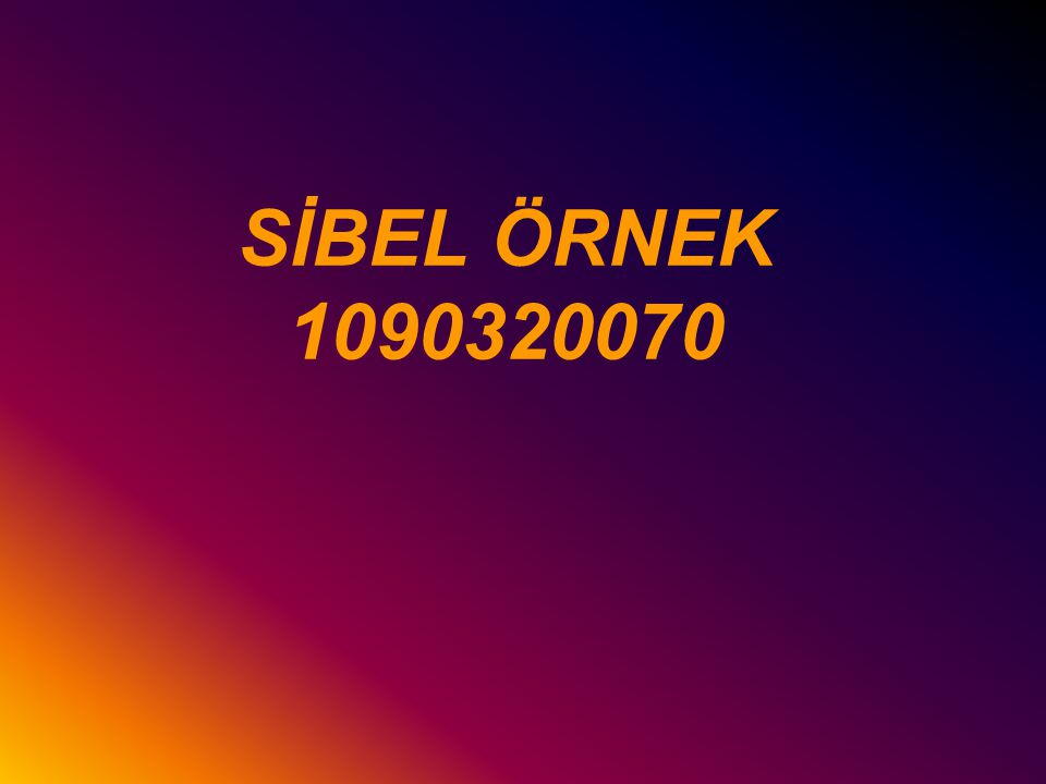 SİBEL ÖRNEK 1090320070
