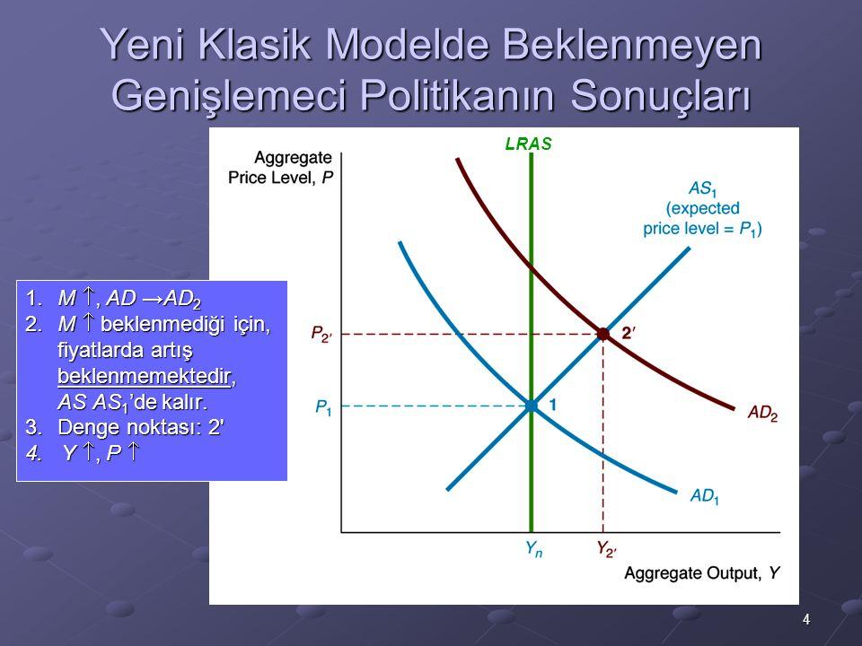 Yeni Klasik Modelde Beklenmeyen Genişlemeci Politikanın Sonuçları