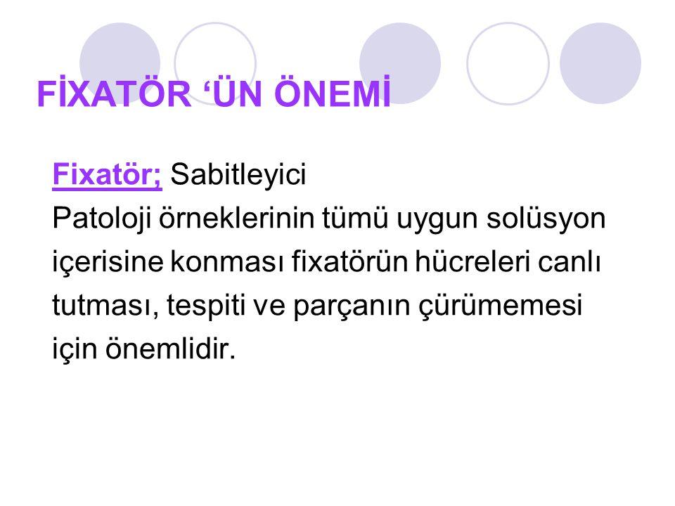 FİXATÖR 'ÜN ÖNEMİ Fixatör; Sabitleyici