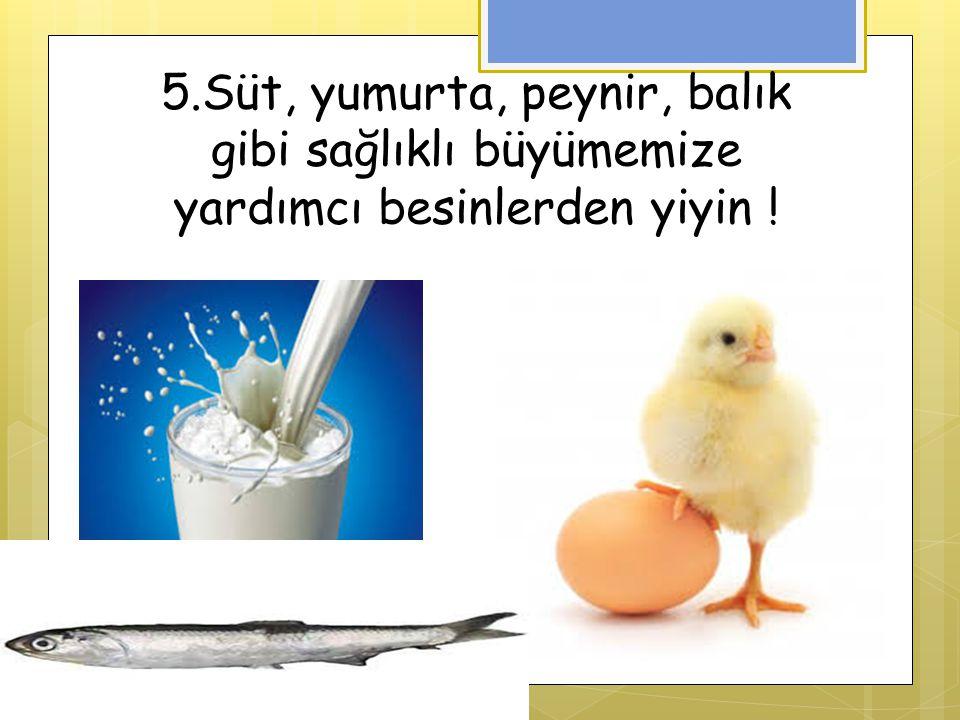 5.Süt, yumurta, peynir, balık gibi sağlıklı büyümemize yardımcı besinlerden yiyin !