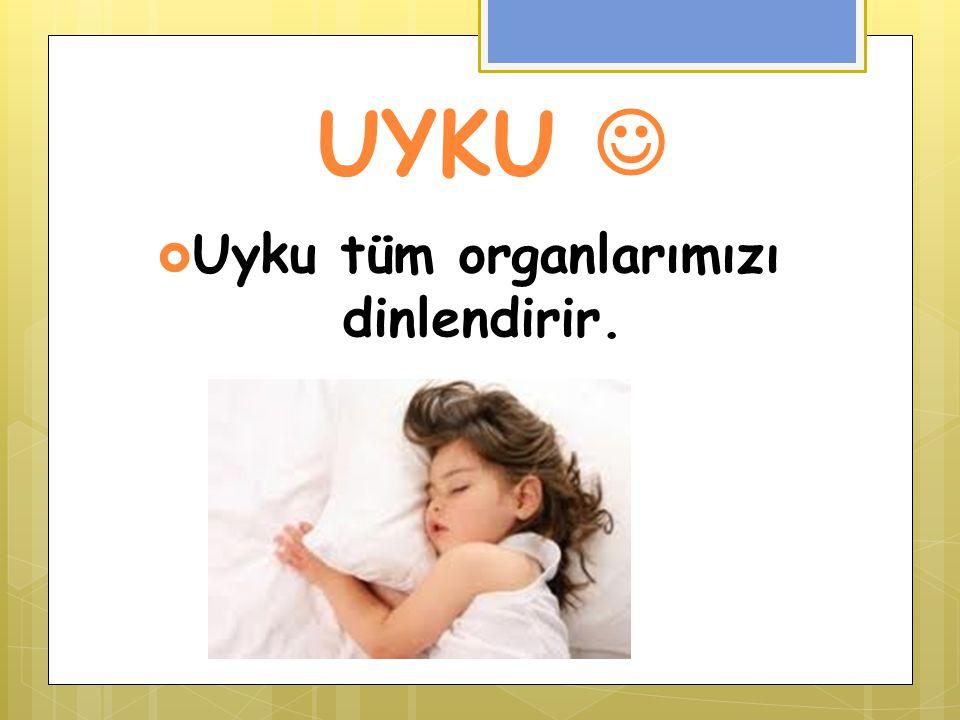 Uyku tüm organlarımızı dinlendirir.