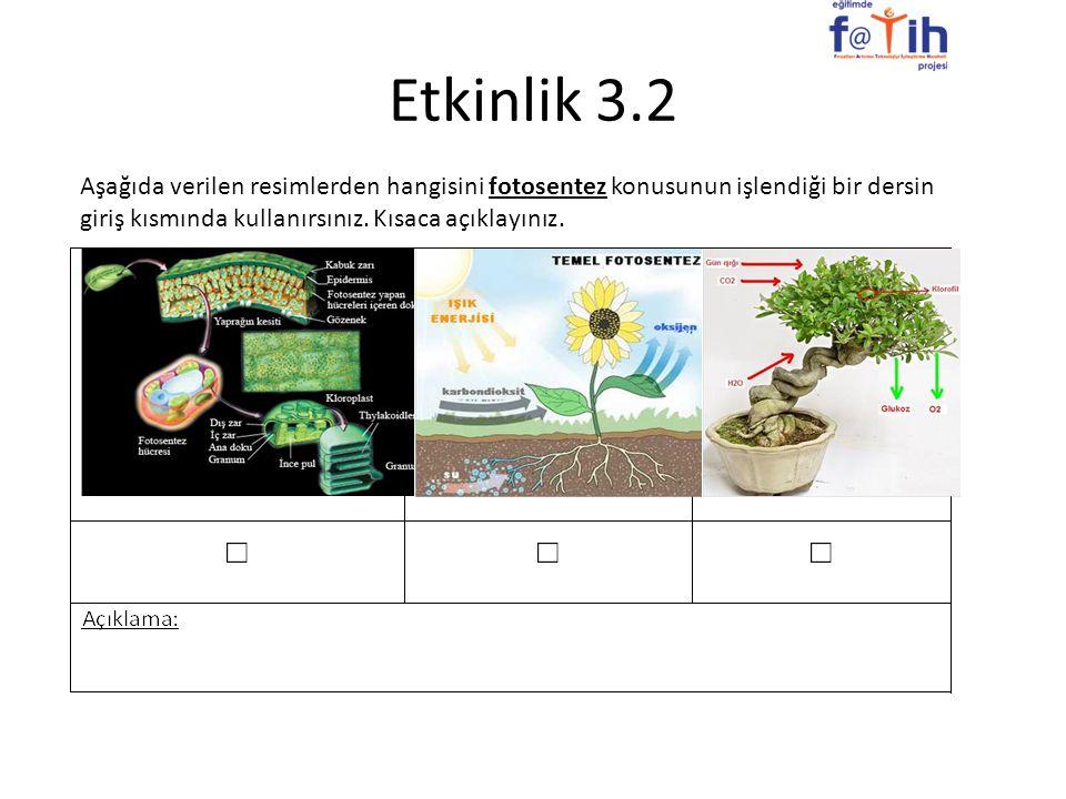 Etkinlik 3.2 Aşağıda verilen resimlerden hangisini fotosentez konusunun işlendiği bir dersin giriş kısmında kullanırsınız.