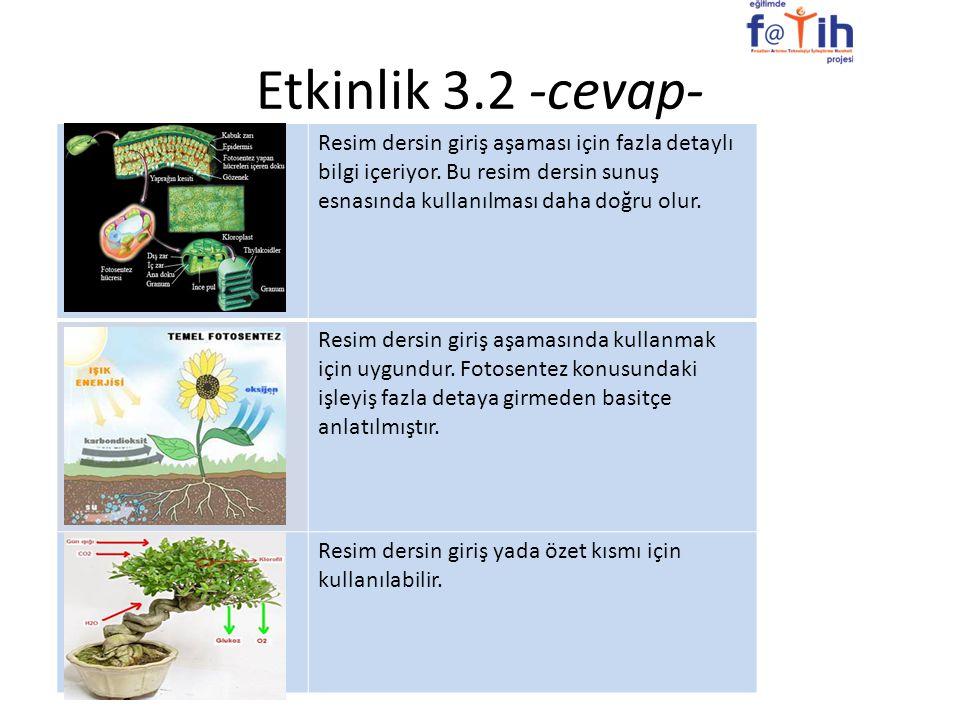 Etkinlik 3.2 -cevap- Resim dersin giriş aşaması için fazla detaylı bilgi içeriyor. Bu resim dersin sunuş esnasında kullanılması daha doğru olur.