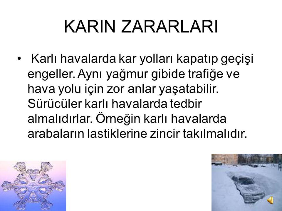 KARIN ZARARLARI