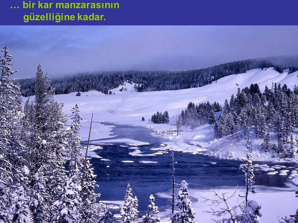 … bir kar manzarasının güzelliğine kadar.