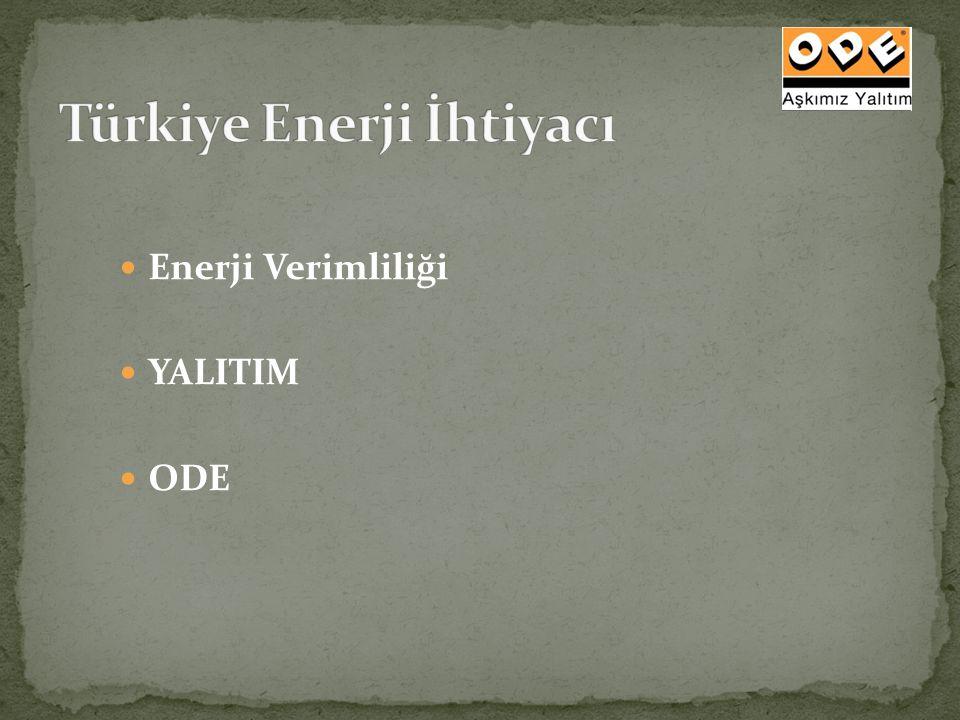 Türkiye Enerji İhtiyacı