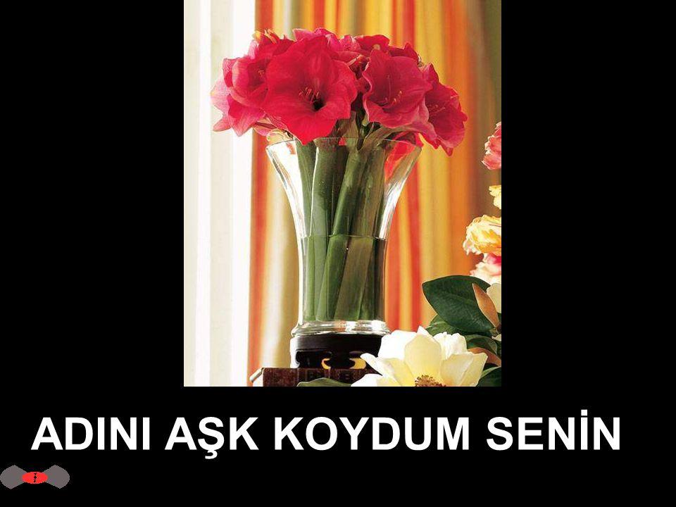 ADINI AŞK KOYDUM SENİN