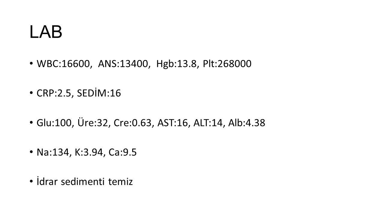 LAB WBC:16600, ANS:13400, Hgb:13.8, Plt:268000 CRP:2.5, SEDİM:16