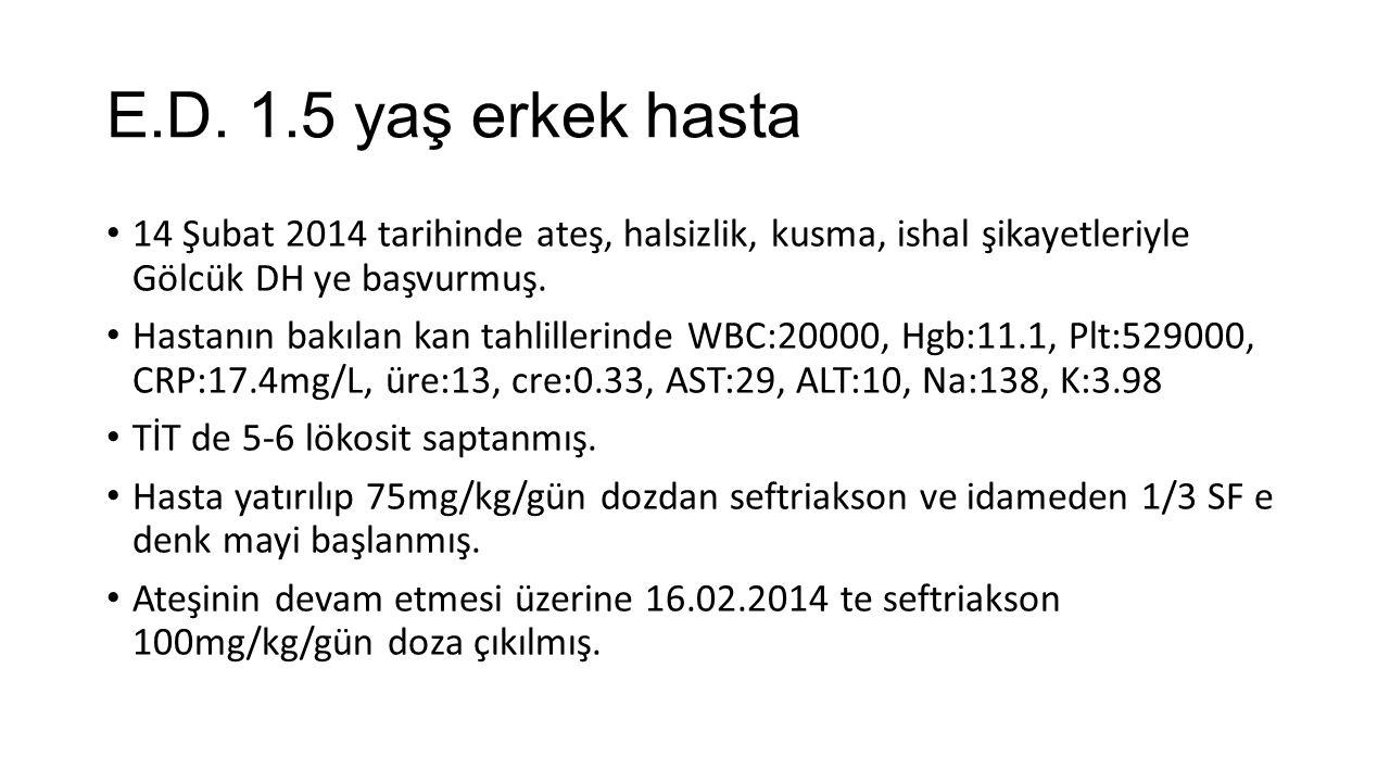E.D. 1.5 yaş erkek hasta 14 Şubat 2014 tarihinde ateş, halsizlik, kusma, ishal şikayetleriyle Gölcük DH ye başvurmuş.