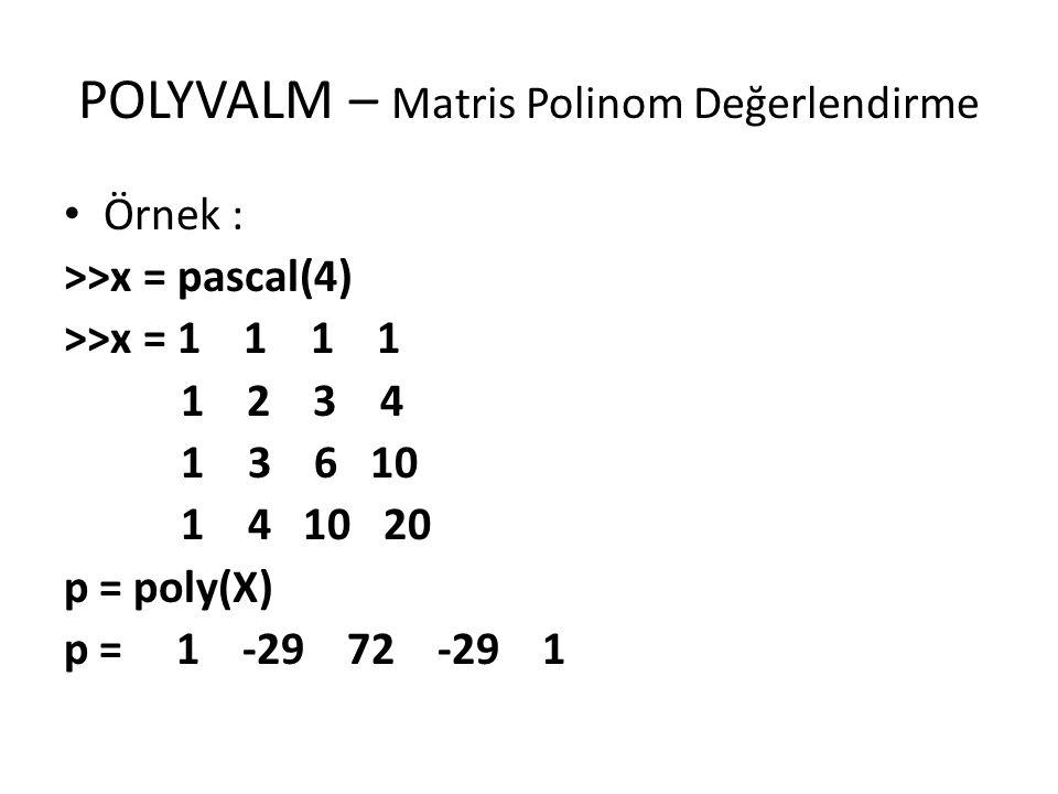 POLYVALM – Matris Polinom Değerlendirme