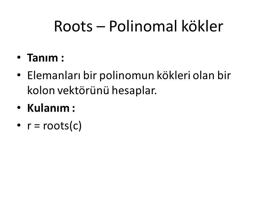 Roots – Polinomal kökler