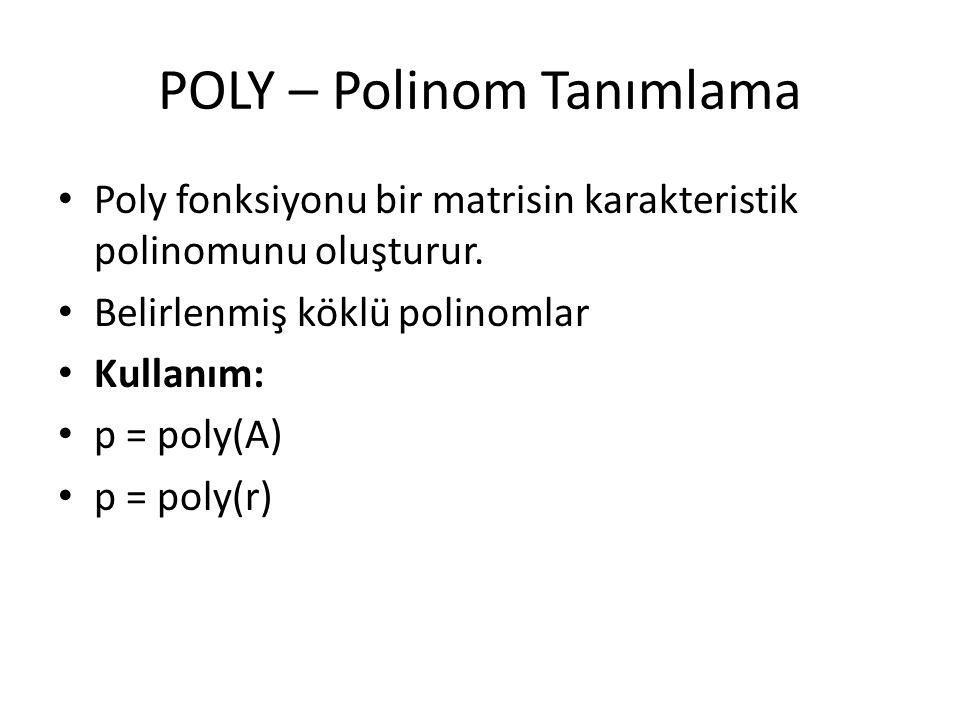 POLY – Polinom Tanımlama
