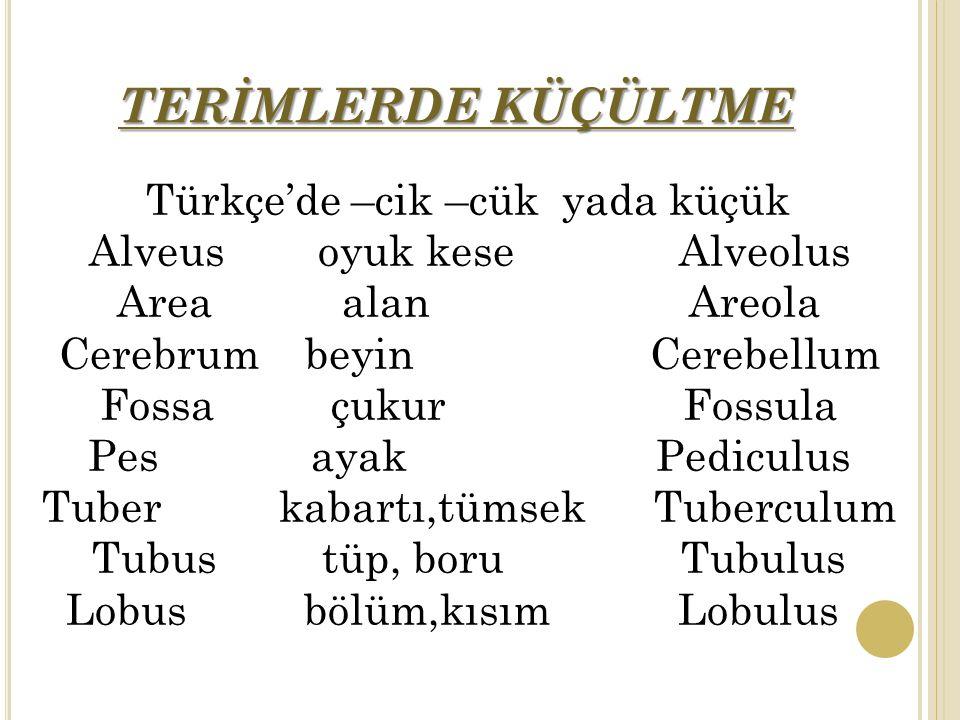 TERİMLERDE KÜÇÜLTME Türkçe'de –cik –cük yada küçük