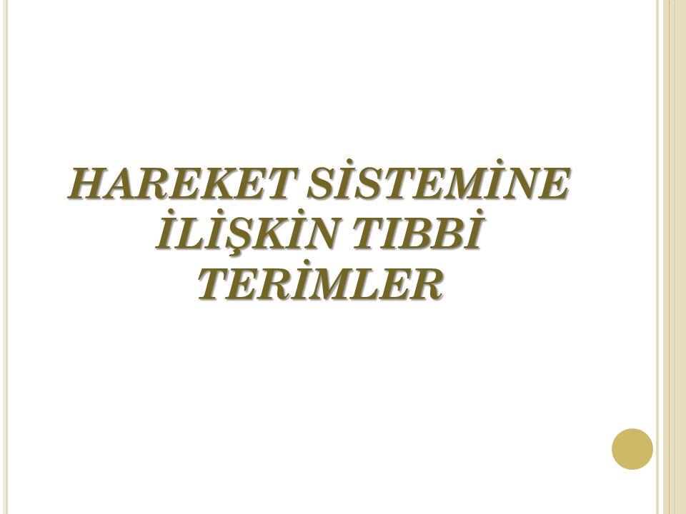 HAREKET SİSTEMİNE İLİŞKİN TIBBİ TERİMLER