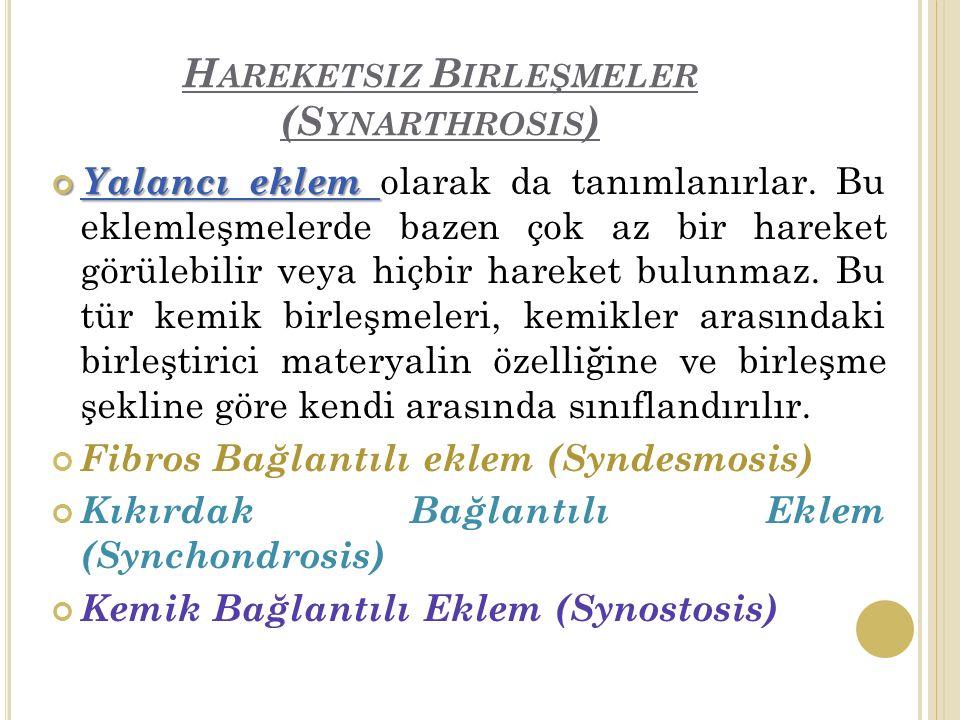 Hareketsiz Birleşmeler (Synarthrosis)